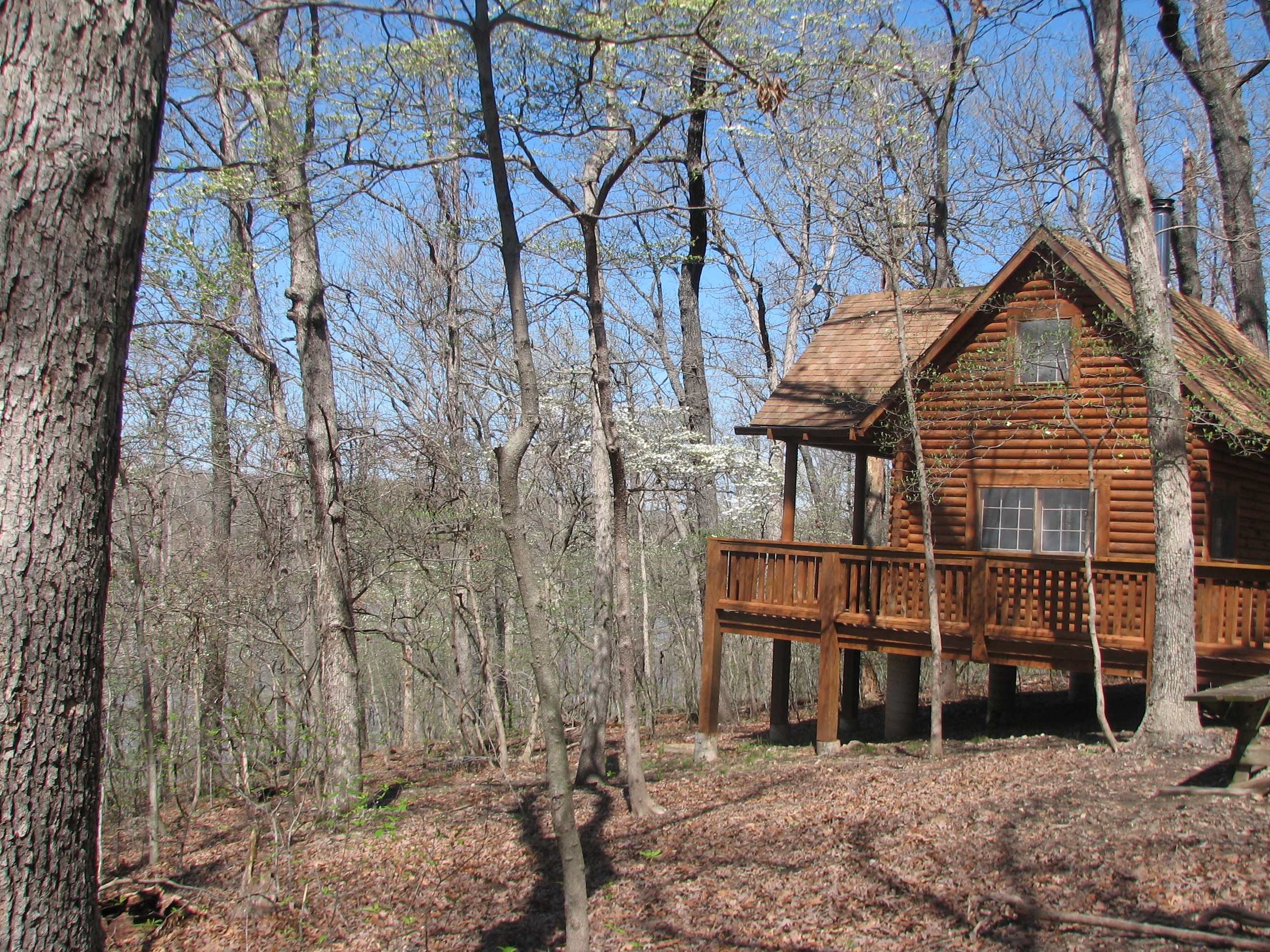 ozarks of back your the cabins vacation directory home golf council cabin lake rentals